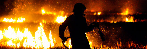 Fire fighter tackling a forest fire