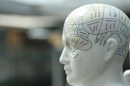 A mannequin with brain mapped on it