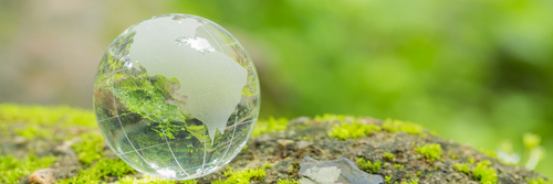 Small transparent globe resting on a rock with lichen