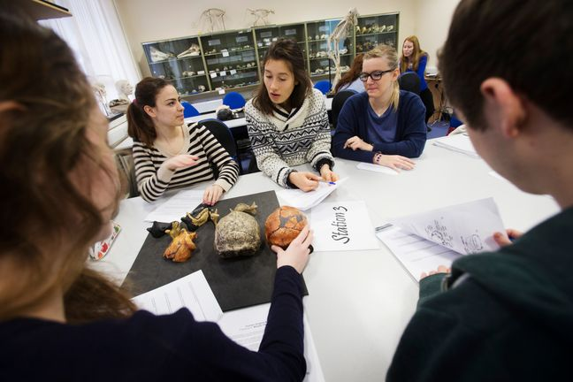 Students sat round a table discussing thoughts on a collection of bones in the centre
