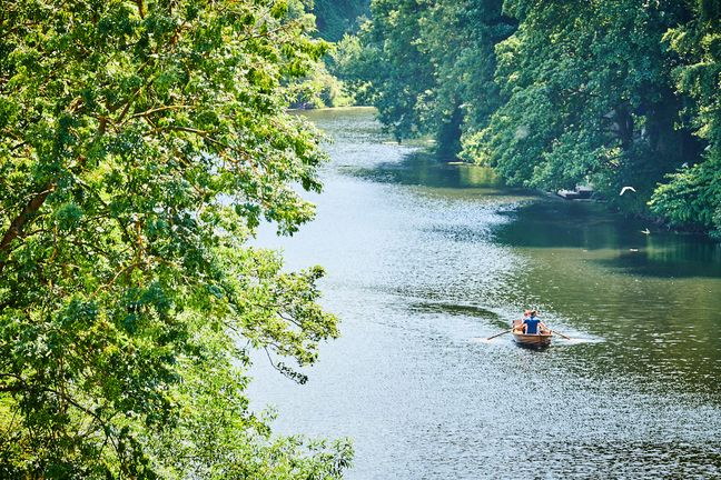 Rowing boat on river