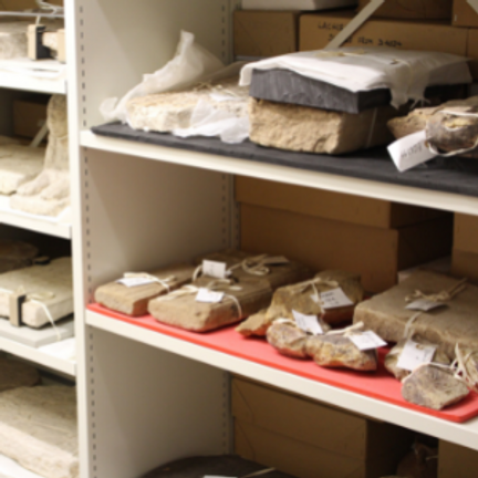 shelves with stone objects laid in rows each with a label tied around it
