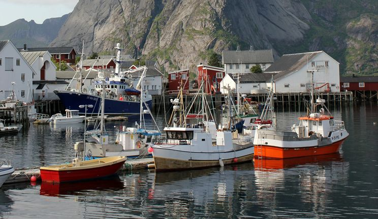 Fishing boats moored at Reine Island, Norway