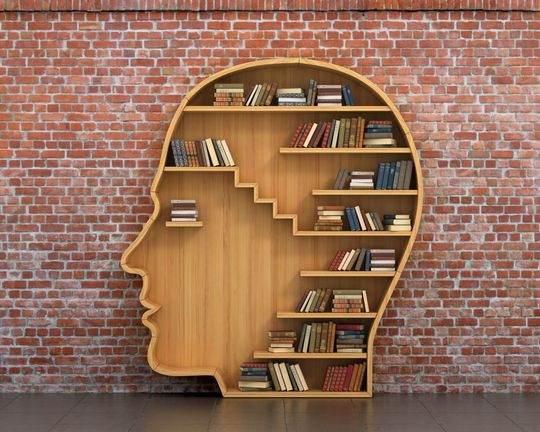 Book case shaped like a head