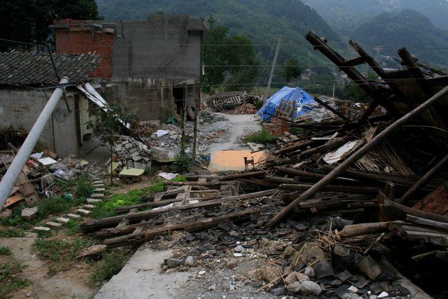 CEDRRiC Project Village
