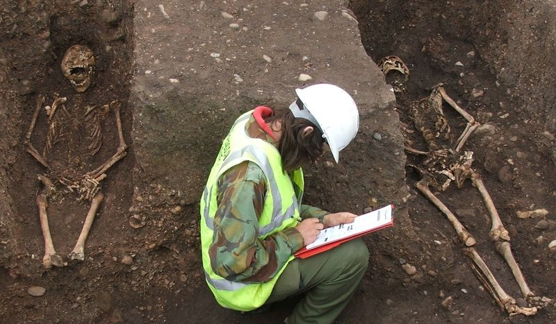 Skeletons unearthed and student with clipboard
