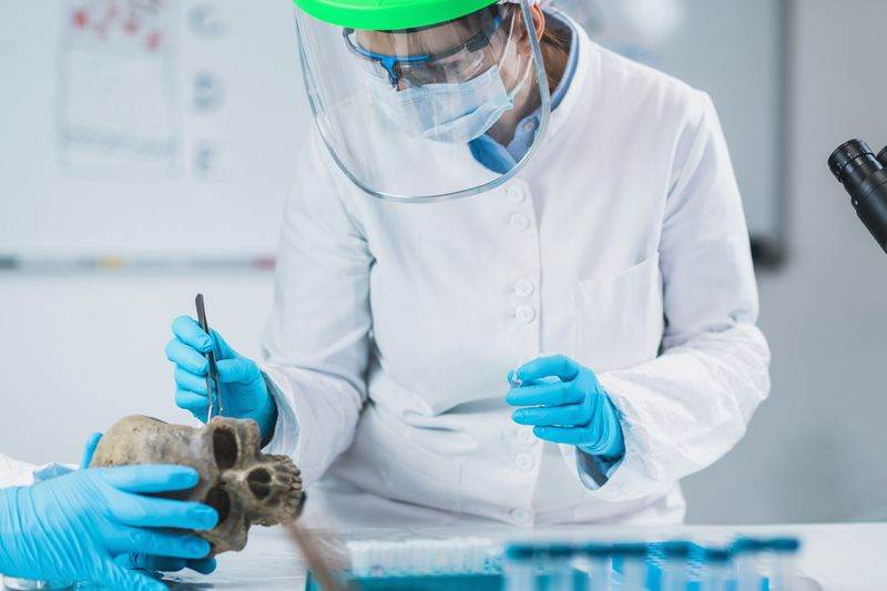young female archaeologist analyzing human skull in ancient DNA laboratory