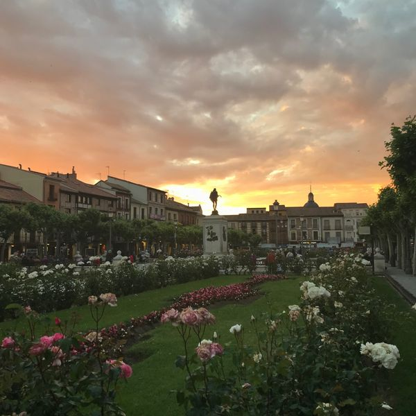 Plaza Cervantes, Alcala de Henares