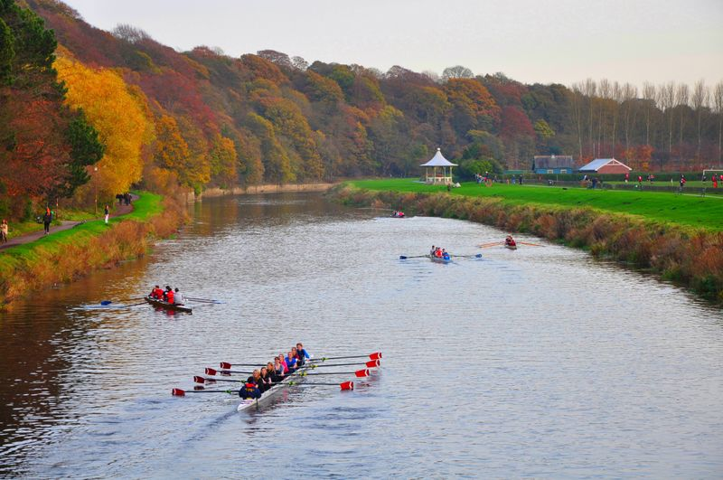 Rowers on the River Wear near the Racecourse