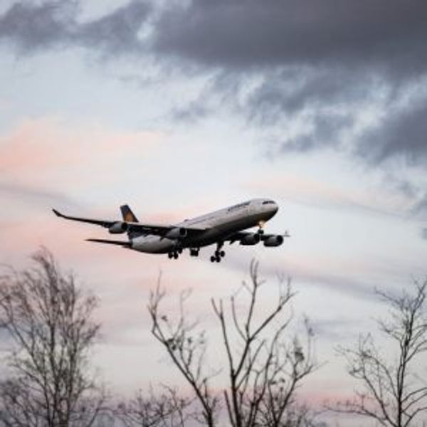 A plane flying over trees at dusk