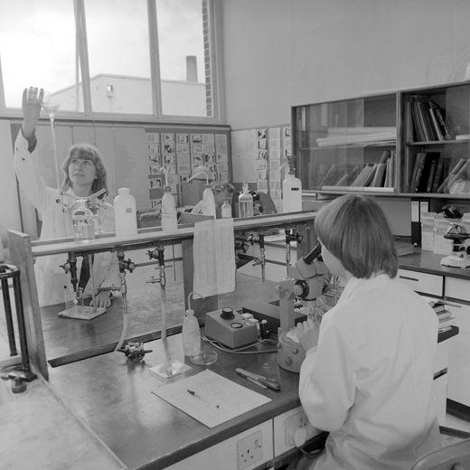 1981 laboratory