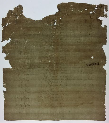 Paper document during conservation