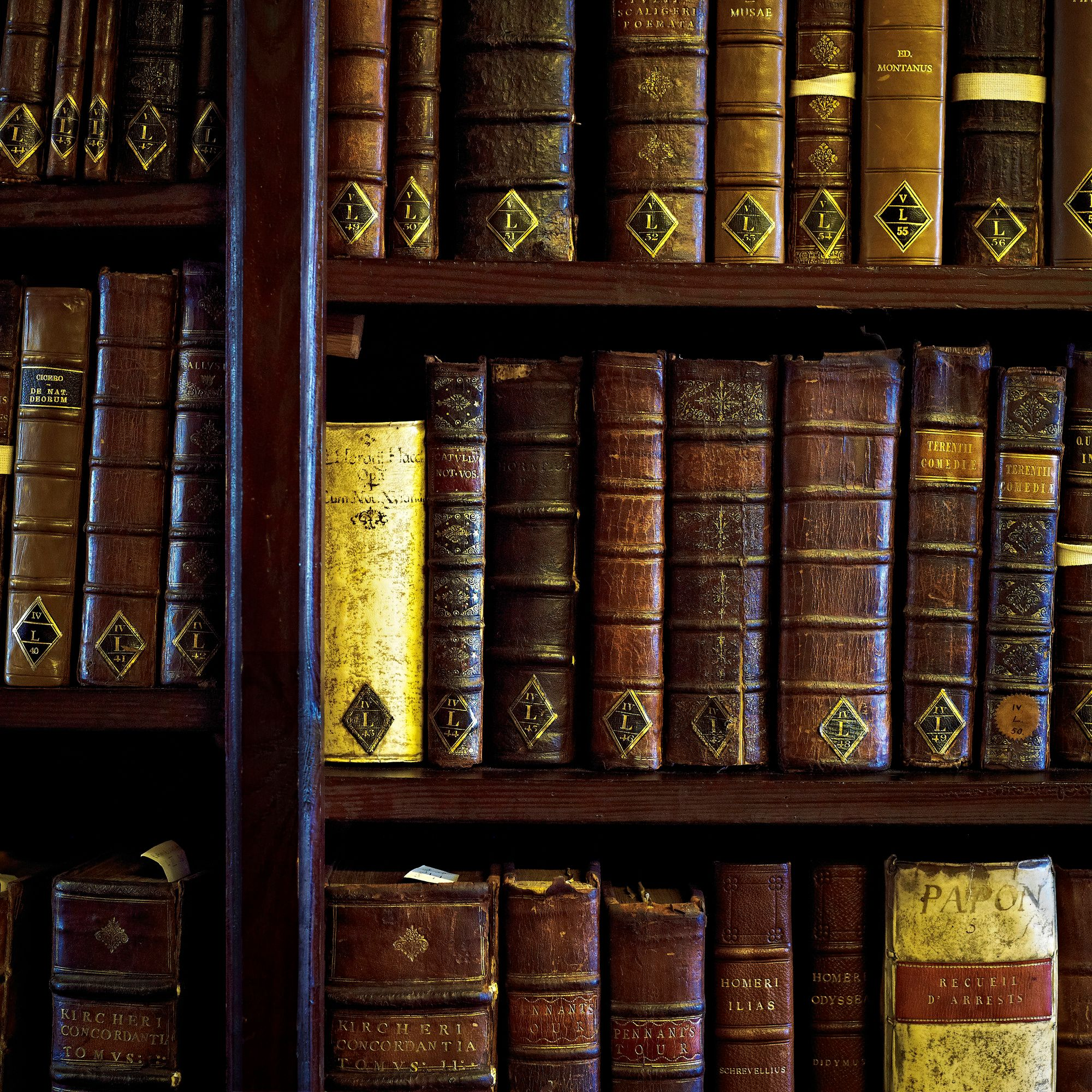 Palace Green Library books