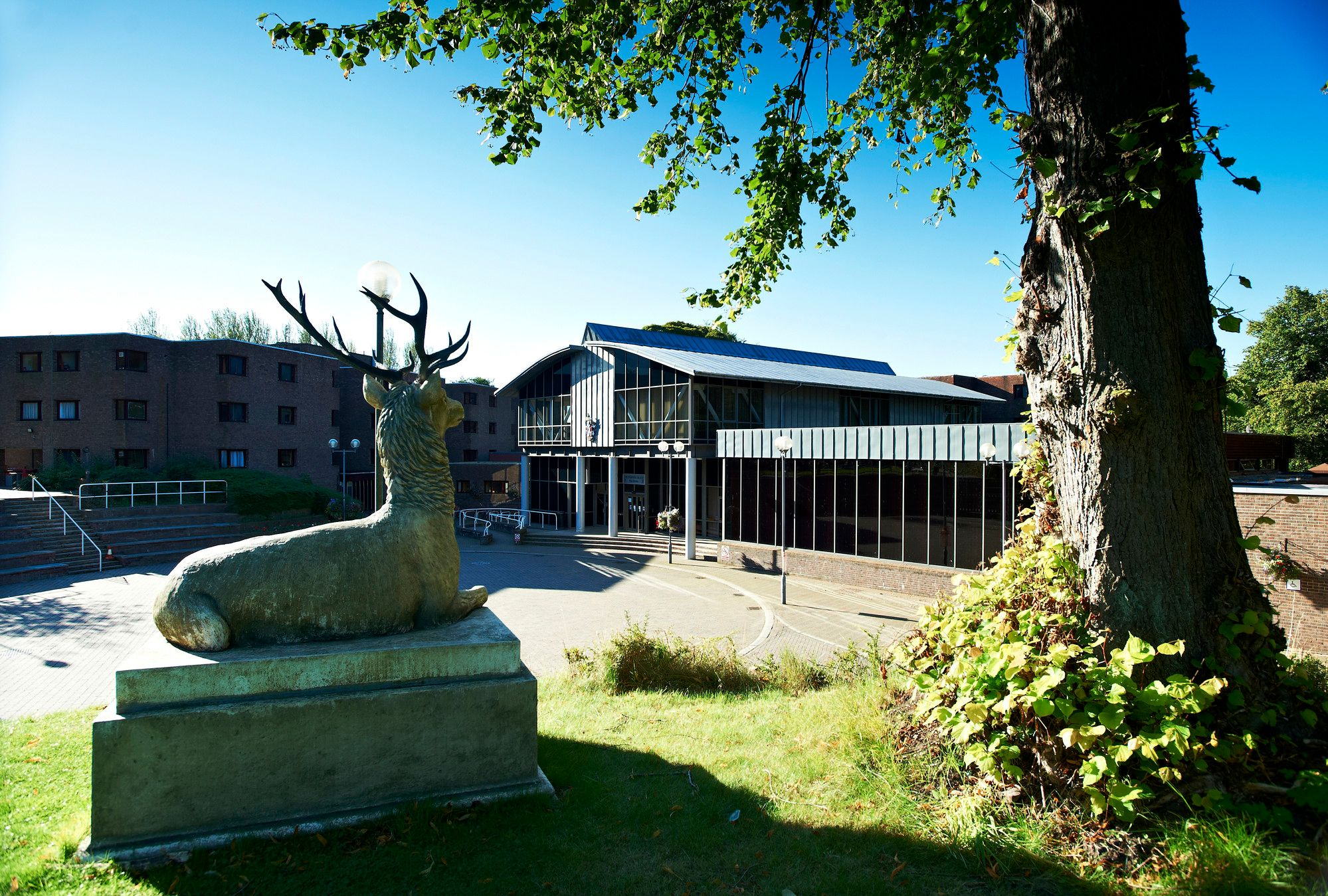 Collingwood College external view with stag statue