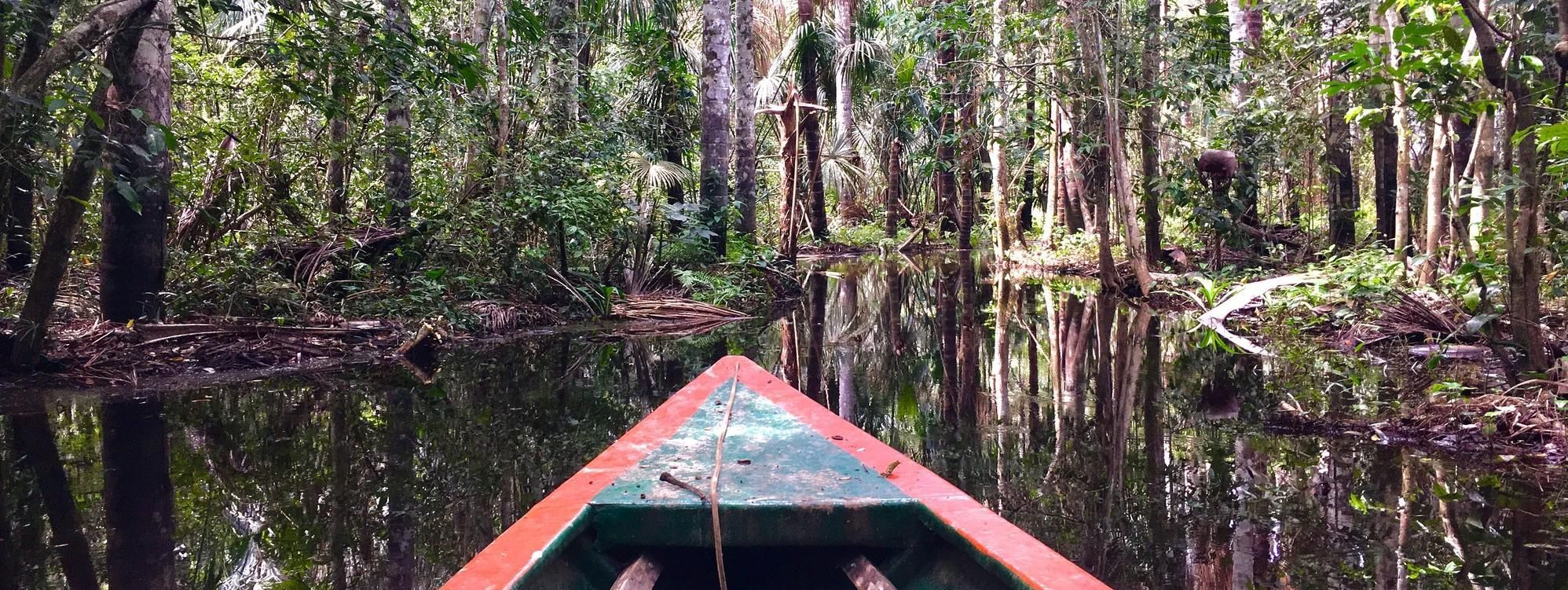 Boat trip in the rainforest