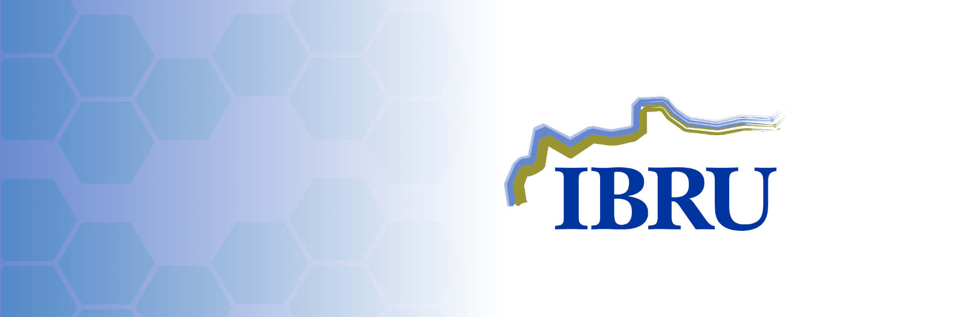 IBRU banner with logo